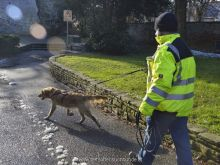 personensuchhunde training13