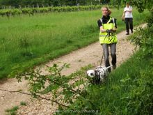 personensuchhunde training26